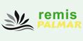 Remis Palmar