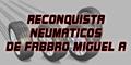 Reconquista Neumaticos de Fabbro Miguel a