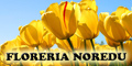 Floreria Noredu