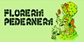 Floreria Pedernera - Atencion las 24 Hs