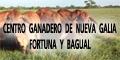 Centro Ganadero de Nueva Galia - Fortuna y Bagual