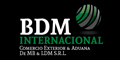 Bdm Internacional - Comercio Exterior