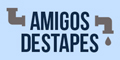 Amigos Destapes