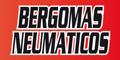 Bergomas - Neumaticos y Escapes
