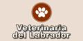 Veterinaria del Labrador