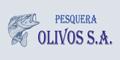 Pesquera Olivos SA