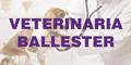 Veterinaria Ballester
