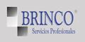 Brinco - Servicios Profesionales