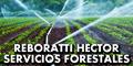 Reboratti Hector - Servicios Forestales