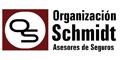 Organizacion Schmidt