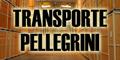 Transportes Pellegrini