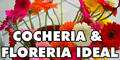 Cocheria & Floreria Ideal