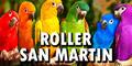 Roller San Martin