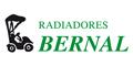 Radiadores Alberto  Bernal