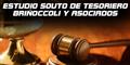 Estudio Souto de Tesoriero Briñoccoli y Asociados