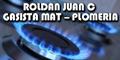 Roldan Juan C