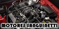 Motores Sanguinetti