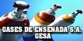 Gases de Ensenada SA - Gesa
