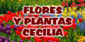 Flores y Plantas Cecilia