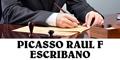 Picasso Raul F Escribano
