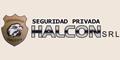 Halcon - Seguridad Privada