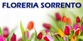 Floreria Sorrento