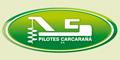 Pilotes Carcaraña SA
