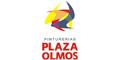 Plaza Olmos Pinturerias