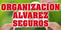 Seguros Organizacion Alvarez