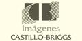 Castillo Briggs Imagenes