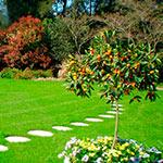 Jardines Bioarmonia