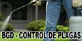 Bgd - Control de Plagas