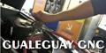 Gualeguay Gnc