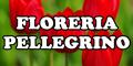 Floreria Pellegrino