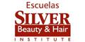 Escuelas Emilio Silver