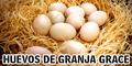 Huevos de Granja Grace
