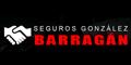 Seguros Gonzalez Barragan