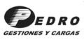 Pedro - Gestiones y Cargas